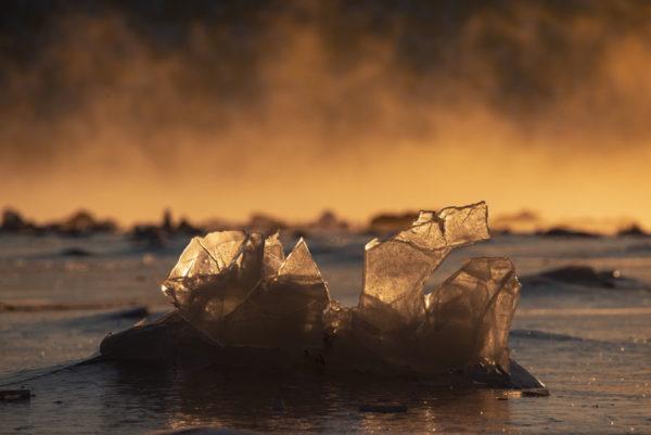 Sculpture de glace sur Senja