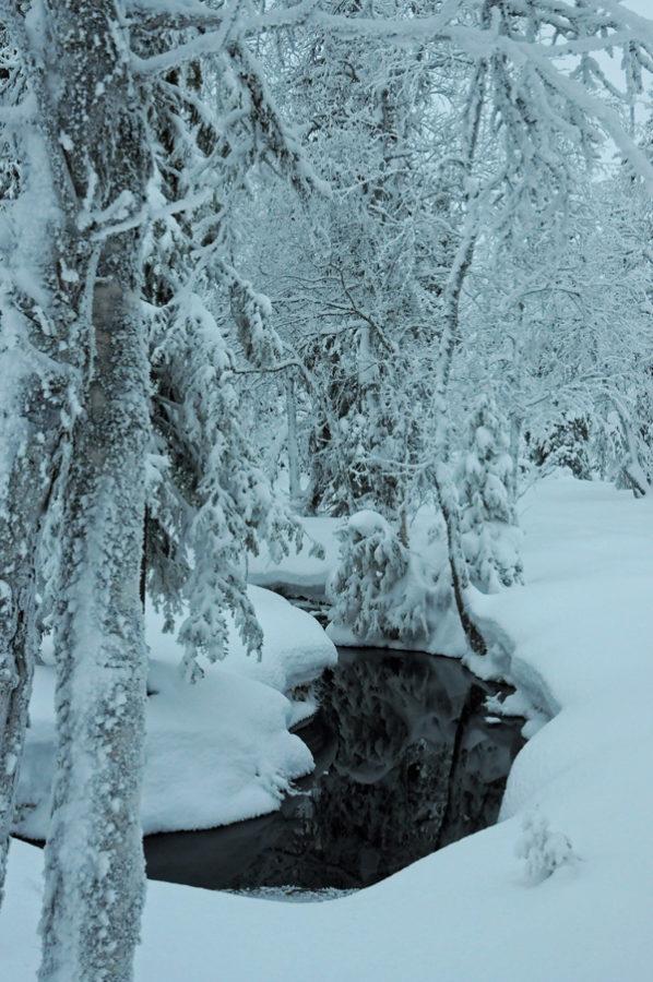 Rivière ouverte en Laponie