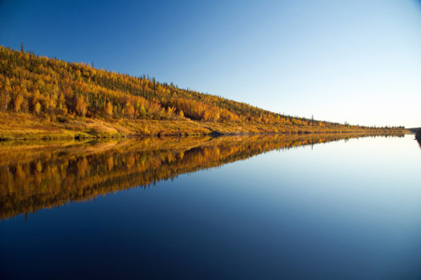 Été indien dans le Yukon