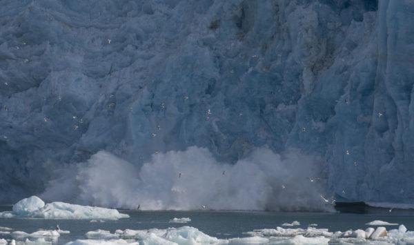Front glaciaire au Spitzberg