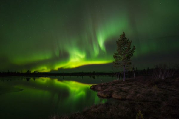 Aurore boréale en Laponie